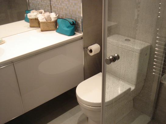 Reforma baños inodoro